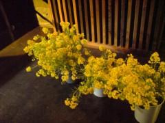 オトナモード 公式ブログ/ステージが花畑!? 画像1