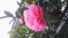 オトナモード 公式ブログ/さむい 画像1