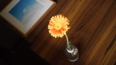 オトナモード 公式ブログ/栄養 画像3