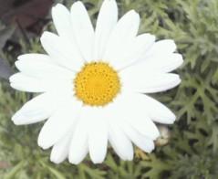 オトナモード 公式ブログ/啓太 画像1