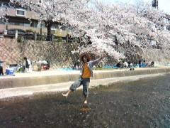 オトナモード 公式ブログ/花見 画像1
