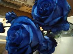 假屋崎省吾 公式ブログ/青いバラ 画像1