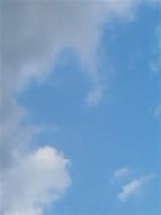 桜木めいか 公式ブログ/お散歩 画像1