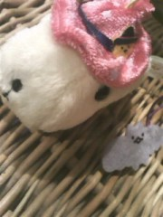 桜木めいか 公式ブログ/でれでれ 画像1