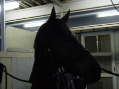 桜井聖良 公式ブログ/12.21 伝言です!有馬記念 画像1
