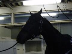 桜井聖良 公式ブログ/12.21 伝言です!有馬記念 画像2