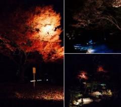 高木洋平 公式ブログ/六義園 画像1