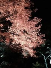 高木洋平 公式ブログ/六義園 画像3