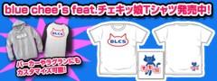 藤岡麻美 公式ブログ/blue chee's祝三周年!本日21:00〜USTREAM生放送だよー! 画像3