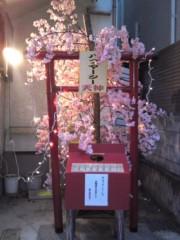 かとうれい子 公式ブログ/事務所のお花見会 画像1