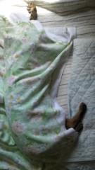 かとうれい子 公式ブログ/寝姿 画像1