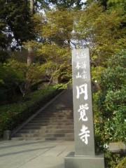 かとうれい子 公式ブログ/生命力 画像2