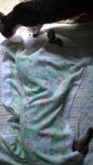 かとうれい子 公式ブログ/寝姿 画像2