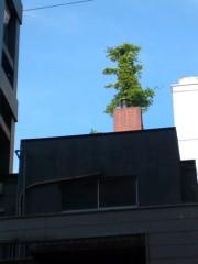 かとうれい子 公式ブログ/煙突から… 画像1