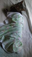 かとうれい子 公式ブログ/寝姿 画像3
