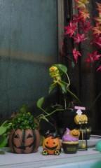 稲村真奈美 公式ブログ/ハロウィン 画像1
