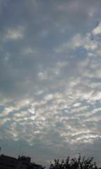 稲村真奈美 公式ブログ/空を 画像1