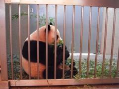 ながせみほ 公式ブログ/2011-03-12 10:04:37 画像2