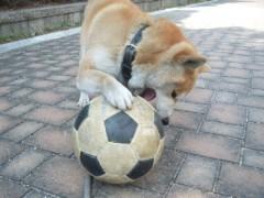 ながせみほ 公式ブログ/サッカー 画像3