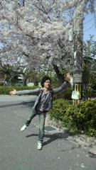 ShunKan 公式ブログ/橋本リュウジ★サクラ 画像1