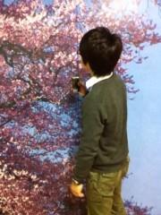 ShunKan 公式ブログ/桜前線♪ 画像1
