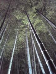 ShunKan 公式ブログ/竹林 画像1