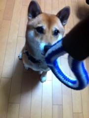 ShunKan 公式ブログ/ハッシュ誕生日! 画像1