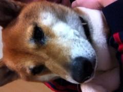 ShunKan 公式ブログ/おやすみハッシュ 画像1