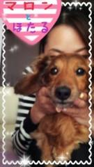 鈴木蛍 公式ブログ/大事な用事 画像3