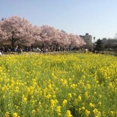 森山翔悟 公式ブログ/まだまだここから! 画像2