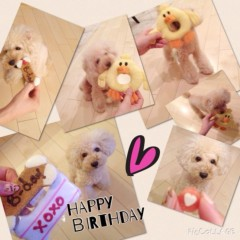 Waka 公式ブログ/チョコ誕生日〜 画像2