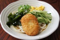 川島けん 公式ブログ/[Lunch]コロッケ冷やしうどん。 画像1