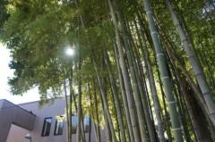 川島けん 公式ブログ/[Lunch]昨日は東京へ出かけてました。その3 画像3