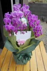 川島けん 公式ブログ/永い付き合いのお客様より花をいただきました 画像1