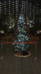 中山優貴 公式ブログ/クリスマスツリー 画像1