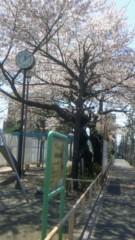 華舞斗 あずみ 公式ブログ/2011-04-12 12:10:15 画像1