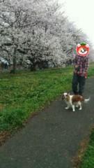 華舞斗 あずみ 公式ブログ/寒いけど 画像1