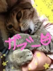 田中愛梨 公式ブログ/ファミリーデイ! 画像2