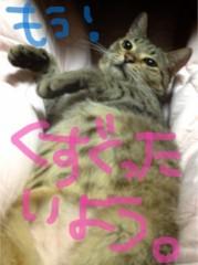 田中愛梨 公式ブログ/にゃんにゃんデイ! 画像2