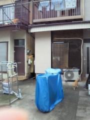 多辺田智里 公式ブログ/さて…何匹? 画像1