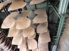 新人 公式ブログ/革 工場 の おはなし 画像2