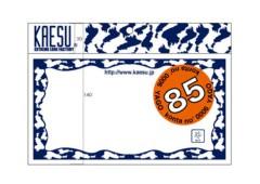 新人 公式ブログ/KAESU の 新製品が出るのだっ 画像2