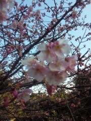 愛川ゆず季 公式ブログ/はーるー 画像2