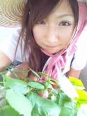 愛川ゆず季 公式ブログ/ベランダ 画像1