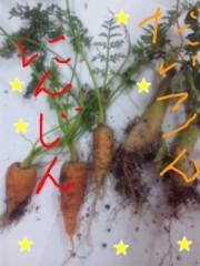 愛川ゆず季 公式ブログ/収穫 画像1