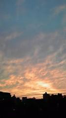 滴草由実 公式ブログ/天使 画像1