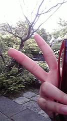 滴草由実 公式ブログ/散歩中〜 画像1