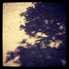 滴草由実 公式ブログ/風景 画像2