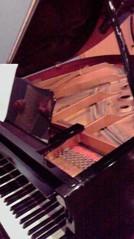 滴草由実 公式ブログ/グランドピアノ 画像1