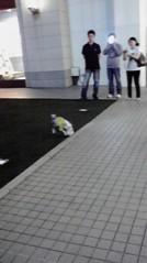 滴草由実 公式ブログ/サッカー犬 画像1